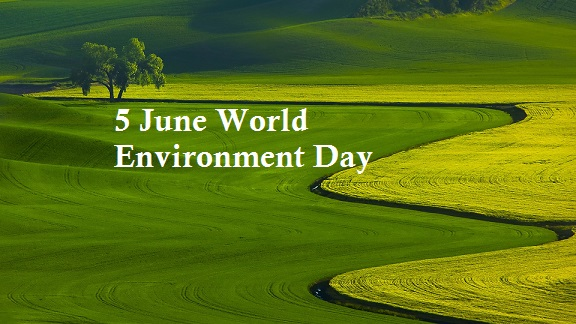 world environment day essay top best collection of essay on world  green grass field world environment day