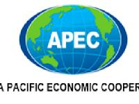 APEC ( Asia Pacific Ekonomi Cooperation )