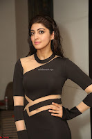 Pranitha Subhash in a skin tight backless brown gown at 64th Jio Filmfare Awards South ~  Exclusive 172.JPG