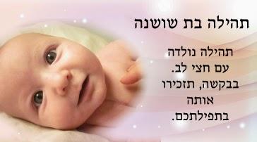 Tehillim-Cards--Hebrew.jpg