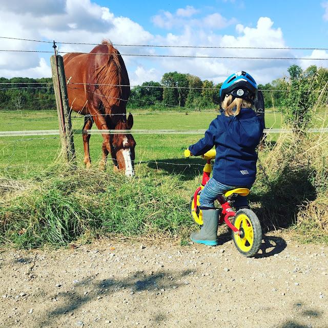 Laufrad fahren mit Pferd