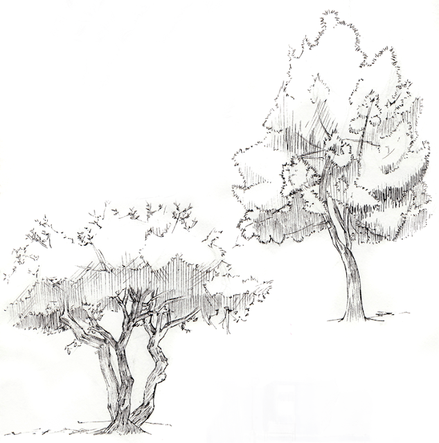 Odds and ends: Ani 113B Trees
