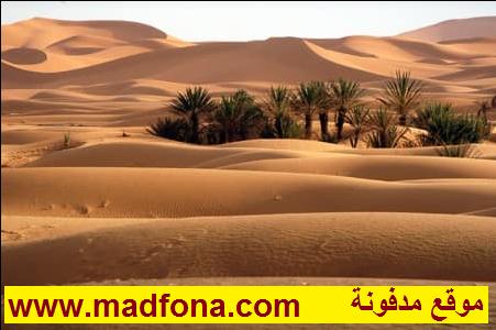 هل سمعتم بحمام الرمال الساخنة في صحراء مرزوگة ؟ ..