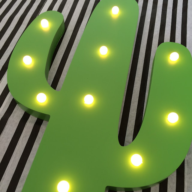 Cactus light home bargains