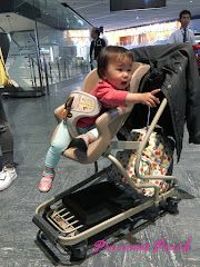 成田機場推車
