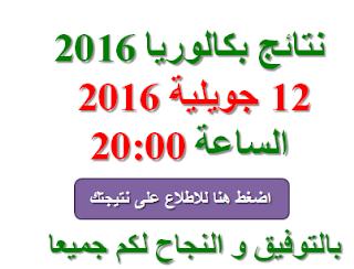 اعلان نتائج بكالوريا 2016 يوم 12 جويلية الساعة 20:00
