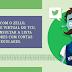 TCU lança um chatbot no TWITTER para consultar se o candidato teve contas irregulares
