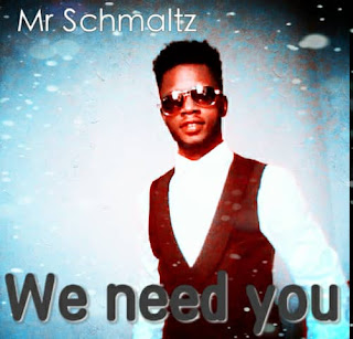 Mr Schmaltz_we need you mp3 Download