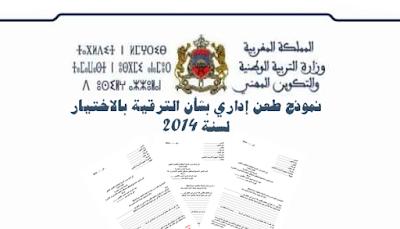 نموذج طعن إداري بشأن الترقية بالاختيار لسنة 2014
