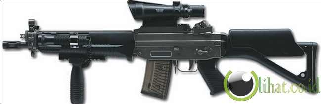 SIG SG 550