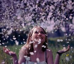 Resultado de imagem para na chuva de pétalas, flores