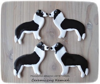 Magnesy z border collie