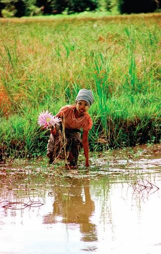 Children Fun during Monsoon