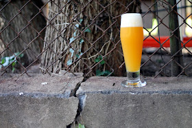 Apricot Quick Sour with Citra and Amarillo.