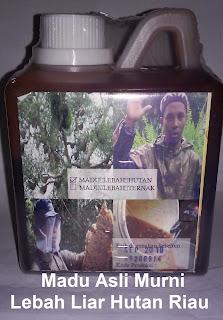 Jual madu super asli/murni lebah liar hutan siak, riau~madu MSG