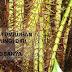 6 Cara Tumbuhan Melindungi Diri dilengkapi Contohnya
