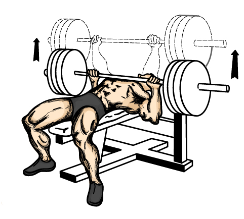 Prime Decline Barbell Bench Press Exercise Punjabi Bodybuilders Ibusinesslaw Wood Chair Design Ideas Ibusinesslaworg