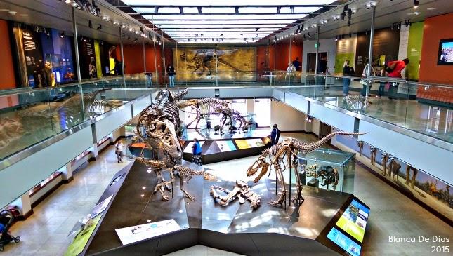 Visita al Museo de Historia Natural en los Ángeles California by www.unamexicanaenusa.com