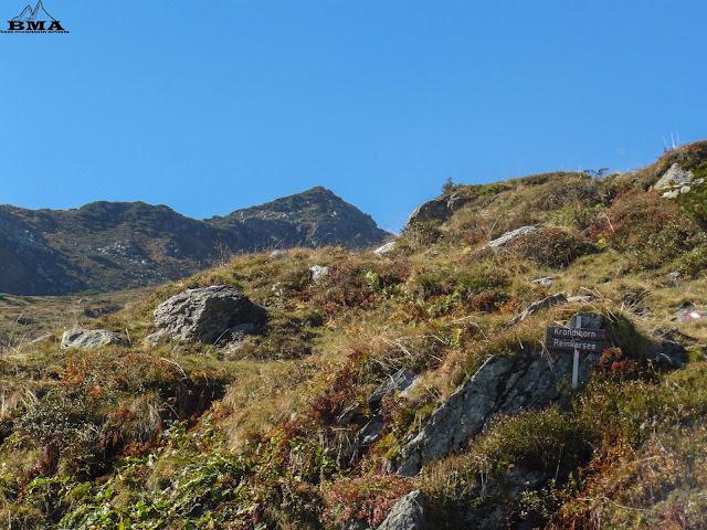 wandern tirol - wanderung kröndelhorn kitzbüheler alpen