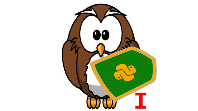 Python Interview Questions: K1 - K10 - Udemy Course