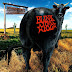 Blink-182 - Dude Ranch - Album (1997) [iTunes Plus AAC M4A]