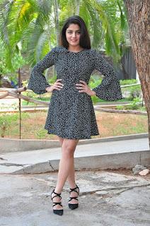 Wamiqa Gabbi Stills in Short Dress at Nannu Vadili Neevu Polevule Pressmeet