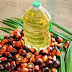 5 Amazing Palm Oil Benefits For Everyone