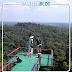 Menyaksikan Monyet Hantu di Bukit Peramun Belitung