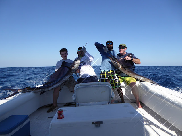 Doubles and Triple billfish releases are common in Guatemala | Guatemala Sport Fishing