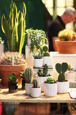 The Urban Garden Show