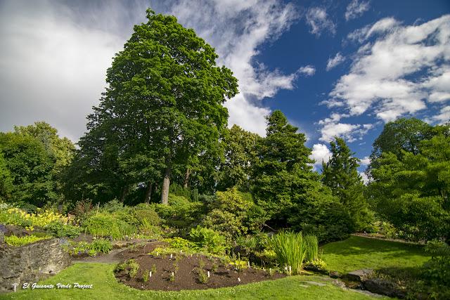 Jardin Botánico de Toyen - Oslo por El Guisante Verde Project