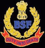 bsf+logo