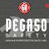 Descubre las nuevas PEGASO Eyewear con tecnología contraimpacto y polarizadas! pedidos ☎️ : 014466098 📱 : 982896680