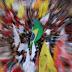 Vergonha de ser brasileiro bate recorde, diz Datafolha