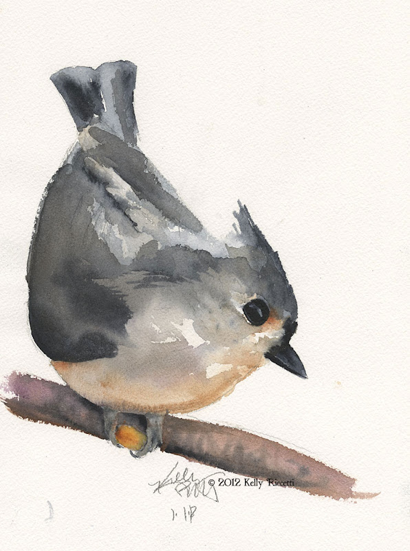 A Tufted Titmouse (Baeolophus bicolor) Grabs a Peanut--watercolor sketch