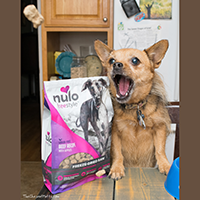 Nulo Freestyle Freeze-Dried Raw Dog Food Review