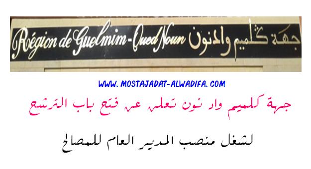 جهة كلميم واد نون تعلن عن فتح باب الترشح لشغل منصب المدير العام للمصالح