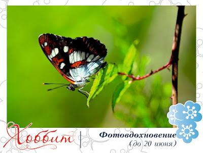 http://hobbitcity.blogspot.ru/2016/05/35_22.html