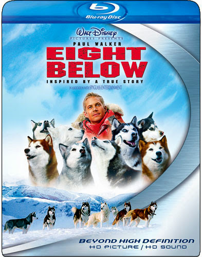 Eight Below 2006 Hindi Dubbed Dual BRRip 300mb