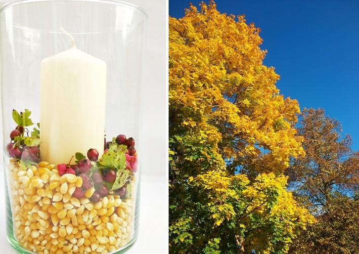 Kerzenglas mit herbstlicher Deko DIY vonKarin