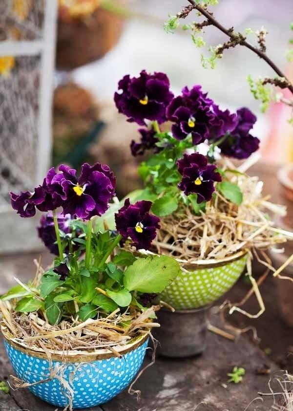 DIY, zrób to sam, bukiet, kompozycja z wiosennych kwiatów, inspiracje, zdjęcia