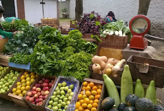 Revolución verde: Donde comprar frutas, verduras y más, naturales y libre de agroquimicos