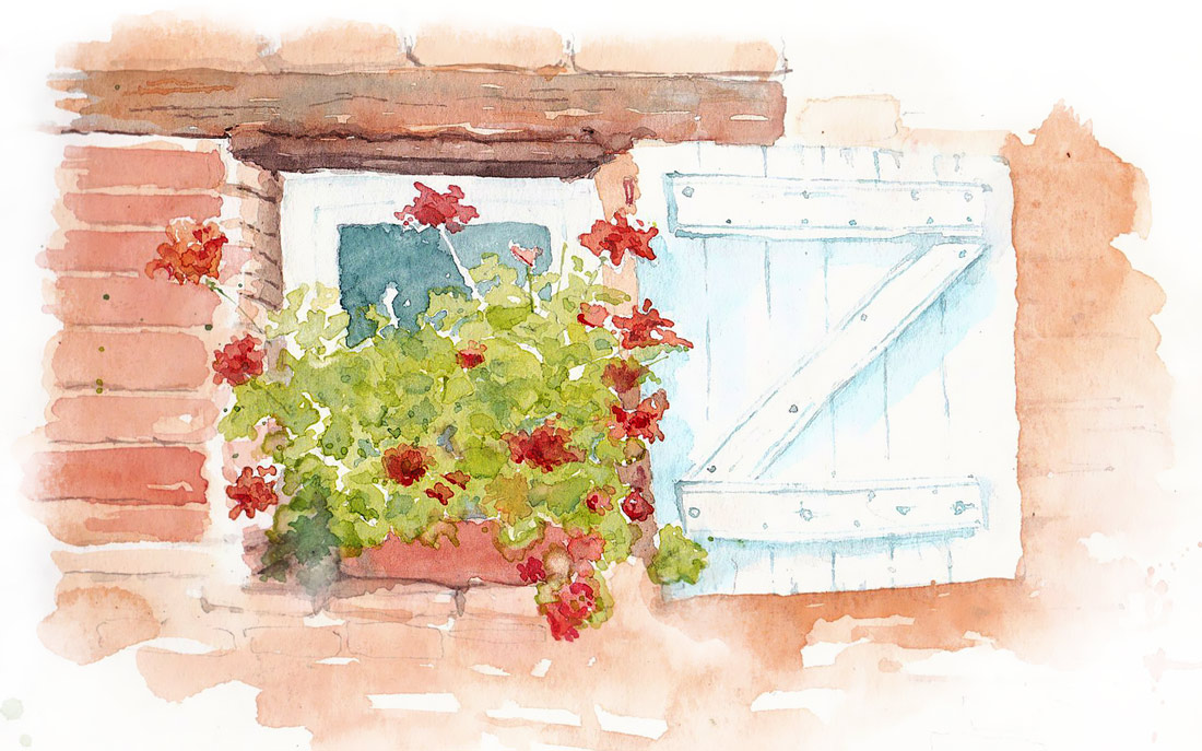 France, Flowers, Watercolor Sketchbook