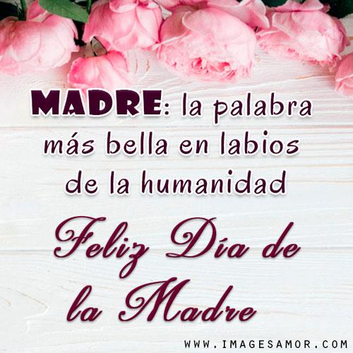 Frases bonitas de feliz día de la madre