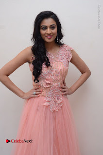Actress Neha Hinge Stills in Pink Long Dress at Srivalli Teaser Launch  0037.JPG