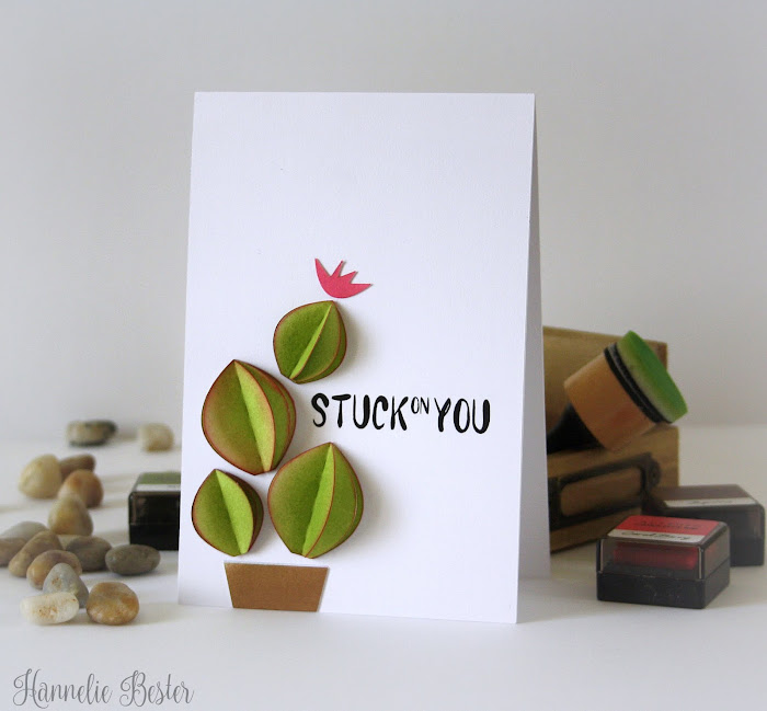 succulent inspired greeting card: a silhouette cameo project