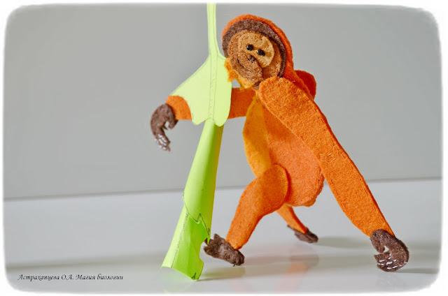 palchikovyj-teatr-orangutan-berezovyj-трубковерт- list