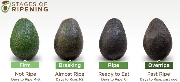 Cara Pilih Buah Avocado Yang Dah Masak