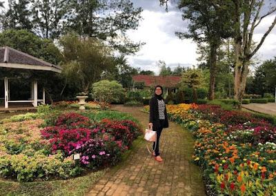 Tujuan Wisata Kebun di Bogor Yang Adem dan Sejuk