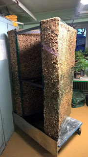 mur végétal sphaigne grillage bac inox